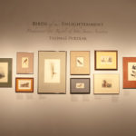 """Title of the exhibition """"Birds of the Enlightenment"""""""