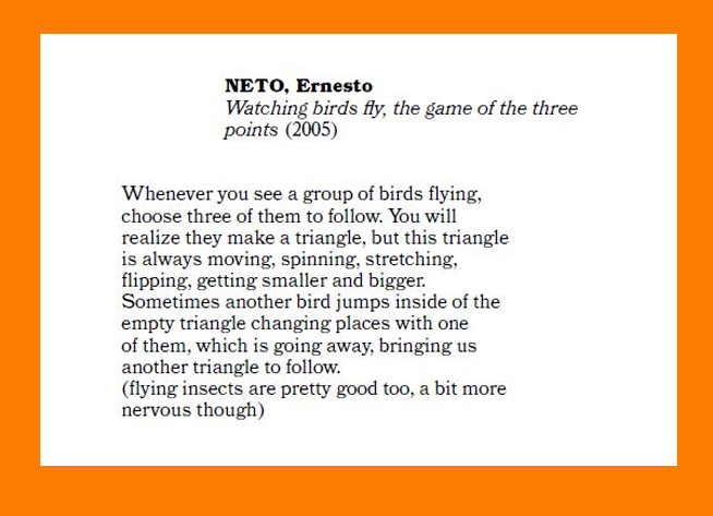 """Watching birds fly, the game of the three points"" Ernesto Neto"