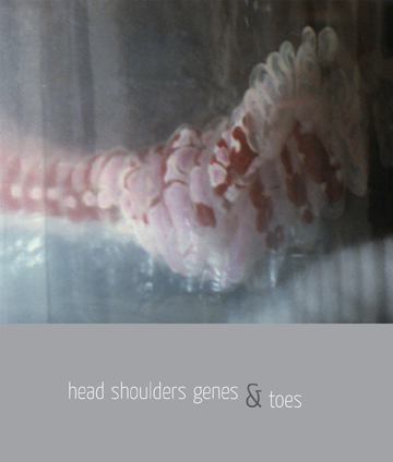 Head, Shoulders, Genes, and Toes cover
